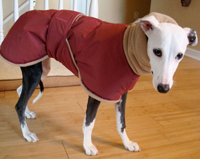GREYHOUND COATS PATTERNS | Browse Patterns
