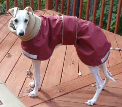 red warm dog coat - beau
