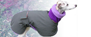 Warm Winter Dog Coats Raincoats Blue Willow Dog Coats